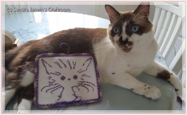 SJSC - PX0008 - Gato, Esquema Gratis, Gato Coco
