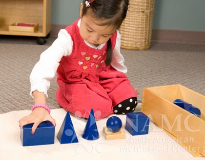 NAMC Montessori absorbent mind ch 22 girl with geometric solids