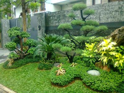 taman rumah minimalis diluar pagar rumah