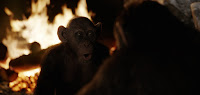 War for the Planet of the Apes Movie Image 5 (9)