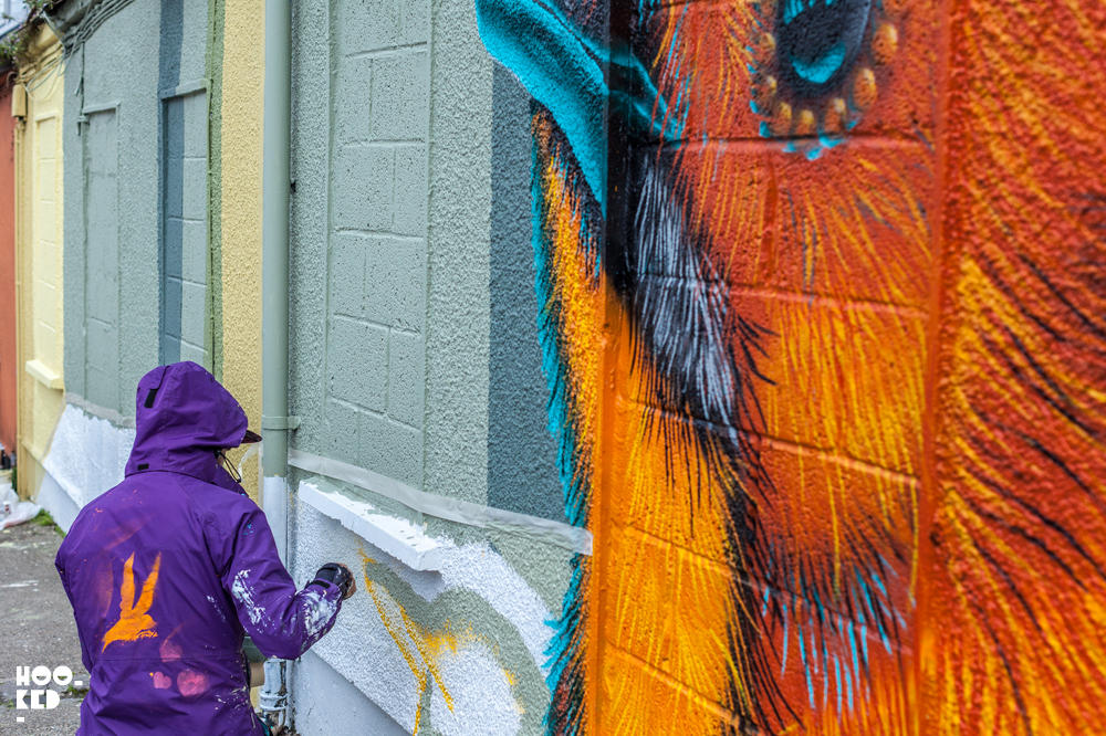 Canadian Street Artist BirdO's Waterford Walls Mural in Ireland