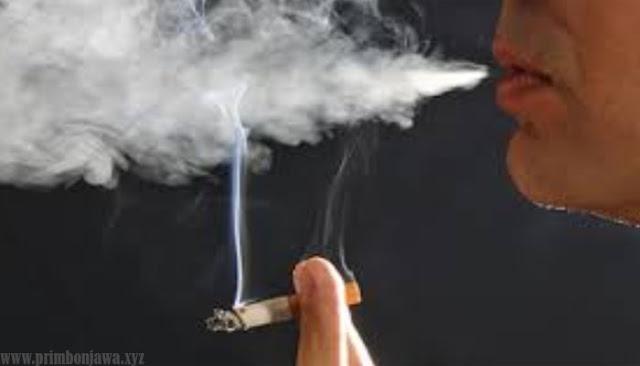 10 Arti Mimpi Rokok Lengkap Dengan Maknanya Menurut Primbon Jawa.