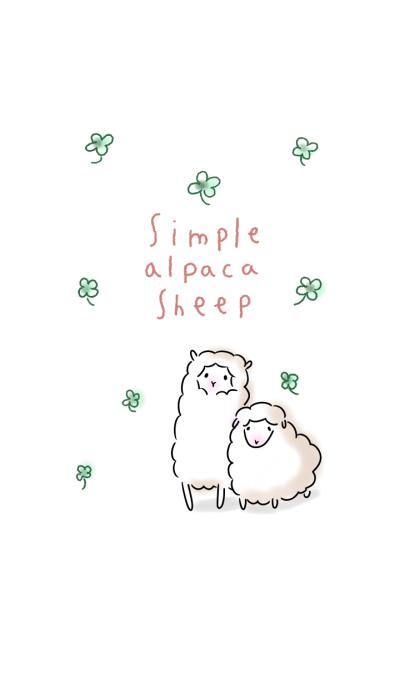 simple alpaca sheep.