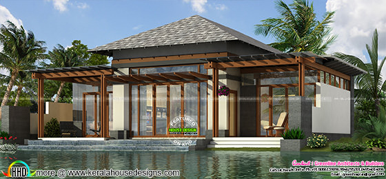 Luxury small home plan