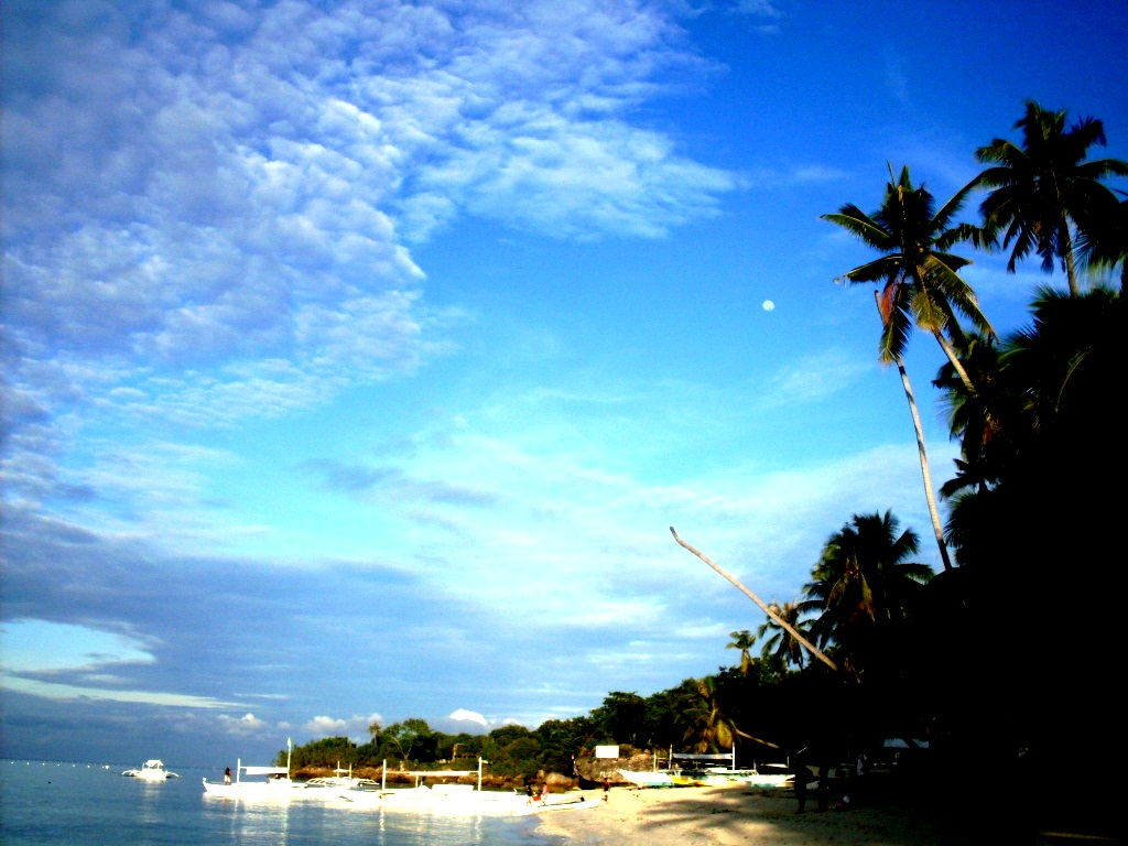 Language In 45 And 47 Stella Street: TRAVELING BALANCE: FROM DAWN TILL DUSK IN PANGLAO ISLAND