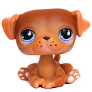 Littlest Pet Shop Large Playset Pug (#786) Pet