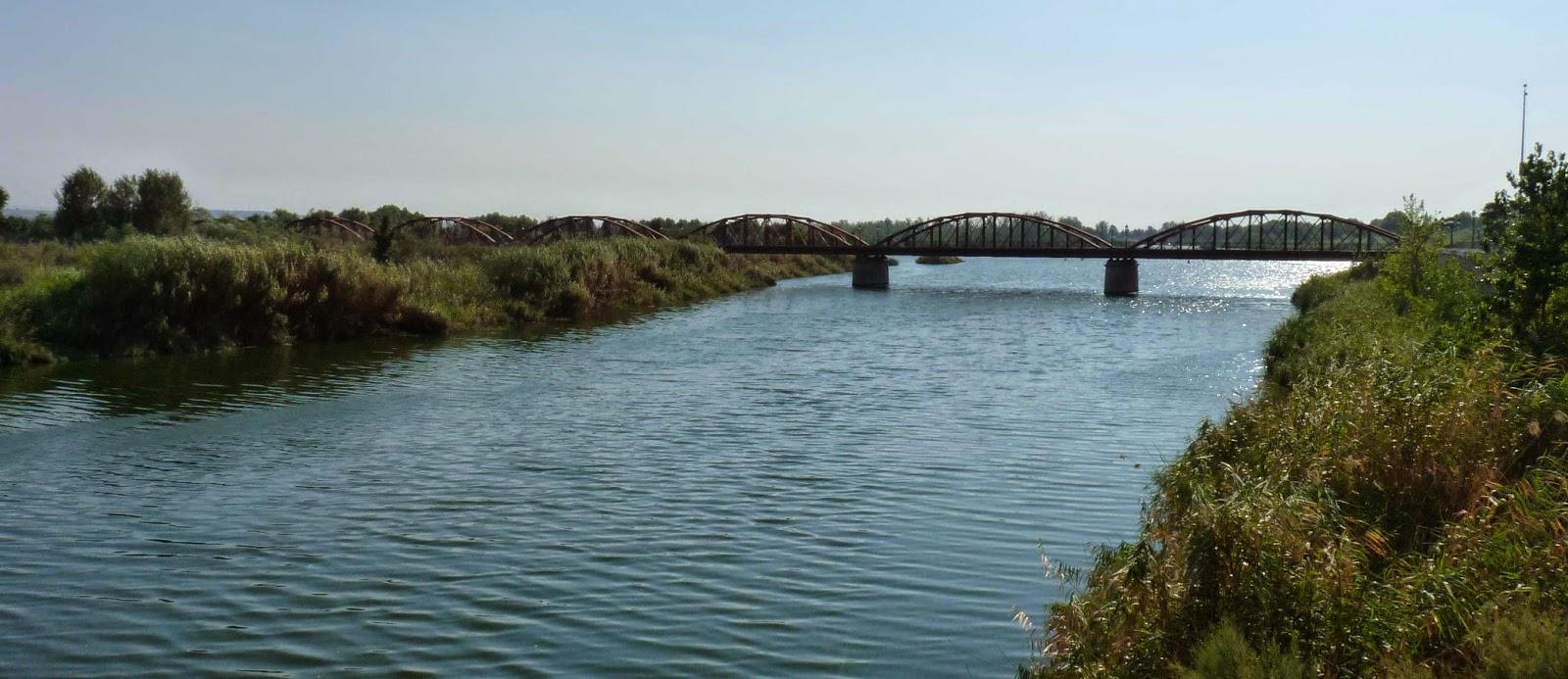 Puente de Hierro o Puente de la Reina Sofía.