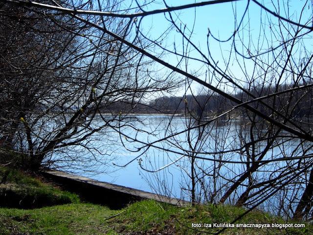 wisła , wiosna , las łęgowy , łęgi , nad rzeką , nad wisłą , przyroda , wiosenna wycieczka , wędrowanie ,