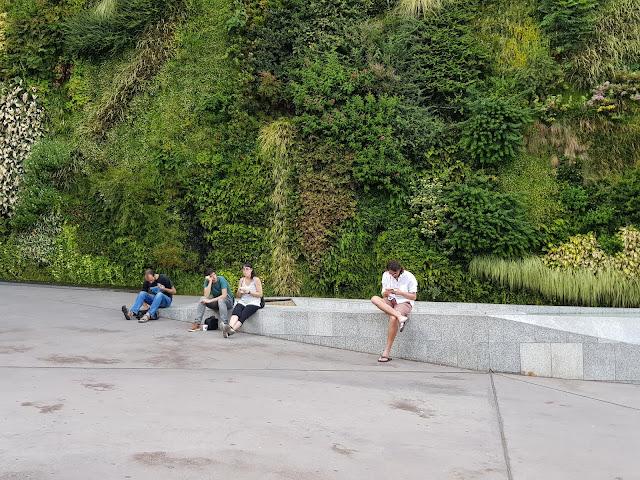 Muro Vegetal, Caixa Forum, Patrick Blanc, Madrid, Espana, Elisa N, Blog Viajes, Lifestyle, Travel, TravelBlogger, Blog Turismo, Viajes, Fotos, Blog LifeStyle, Elisa Argentina