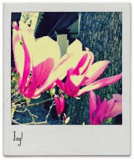 Joy - a poem