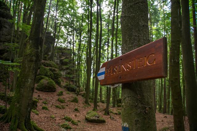 Königstein Rundwanderweg Nr. 18  Steinberg-Rundweg  Amberg-Sulzbacher Land 09