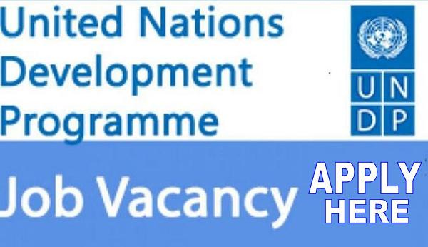United Nations Development Programme Job Recruitment 2018/2019 | Online Registration - Apply Now