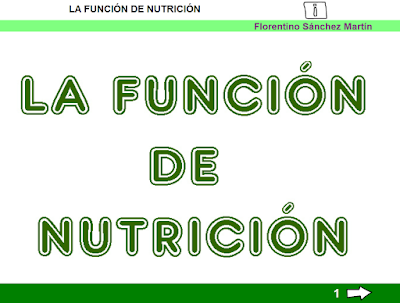 http://ceiploreto.es/sugerencias/cplosangeles.juntaextremadura.net/web/curso_3/naturales_3/nutricion_3/nutricion_3.html