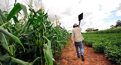 Δελτίο Τύπου, Θέμα : Ενίσχυση 241 εκατ. ευρώ για την εγκατάσταση 12.000 νέων αγροτών.
