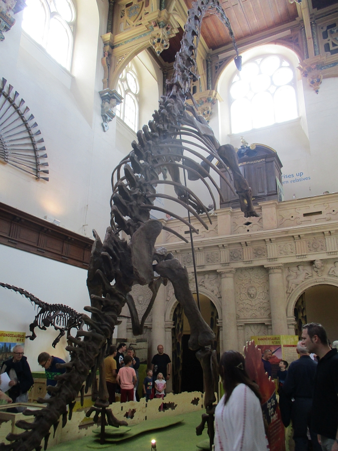 Dinosaurs of China in Nottingham: part 1 - Ground Shakers