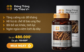 dong-trung-ha-thao