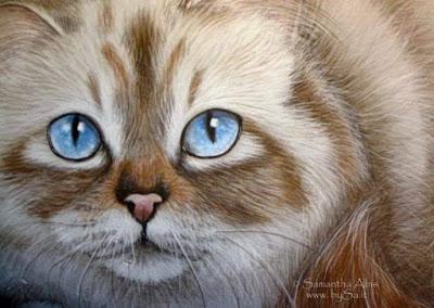 poesie sui gatti dipinti arte