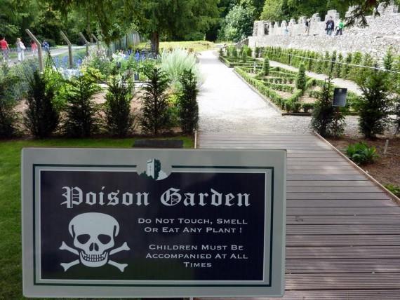 Alnwick Poison Garden - Taman Tanaman Beracun