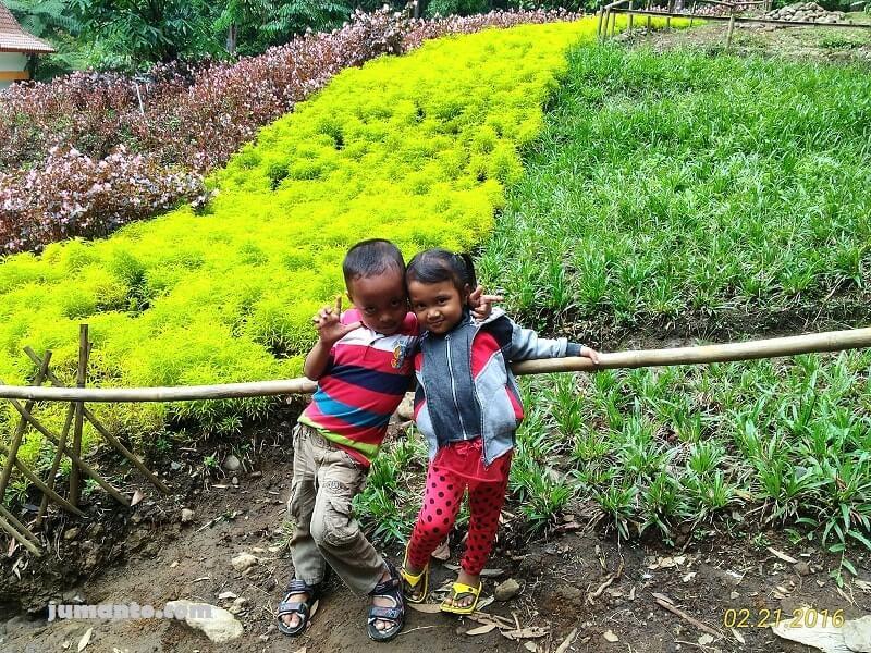 taman bunga kebun raya baturaden