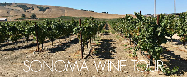 http://www.awayshewentblog.com/2017/02/travel-tuesday-sonoma-wine-tour.html