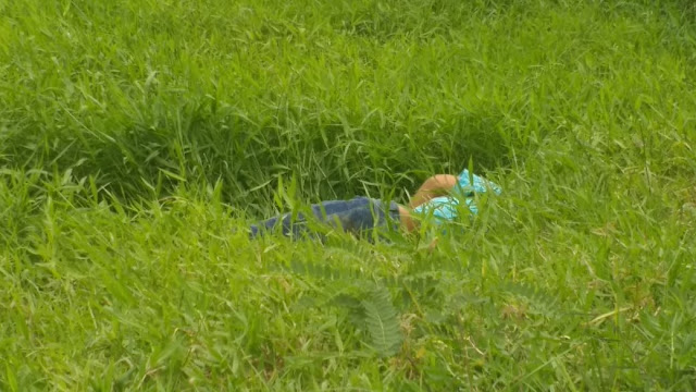 Homem é encontrado morto, com o corpo crivado de balas, em Japaranduba, Palmares