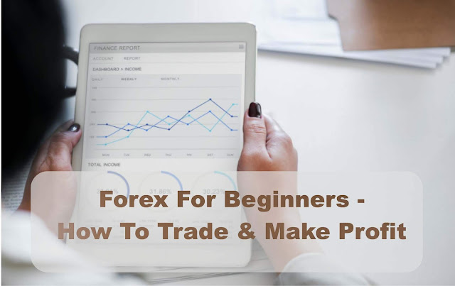 Forex For Beginners - How To Trade & Make Profit