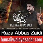 https://www.humaliwalyazadar.com/2019/02/raza-abbas-zaidi-noha-ayyam-e-fatima.html