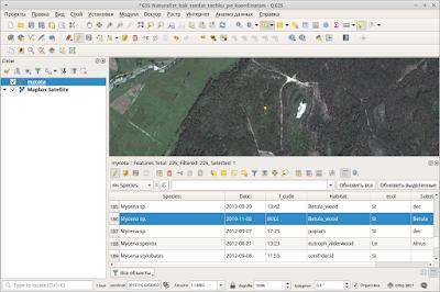 QGIS Lat Lon Tools new feature in attribute table новый только-что созанный объект в таблице атрибутов