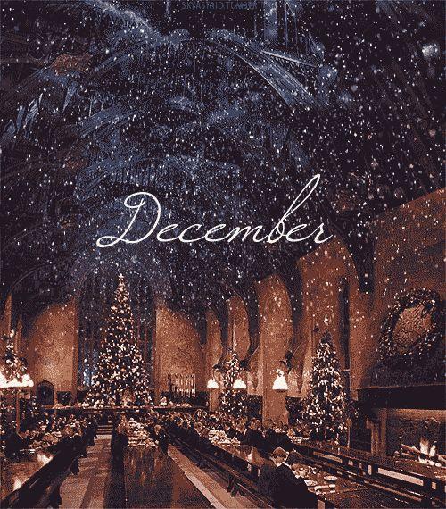 Winter ~ christmas vibes