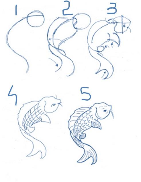 Cara Menggambar Ikan Koi Dengan Mudah Pelajaran Menggambar