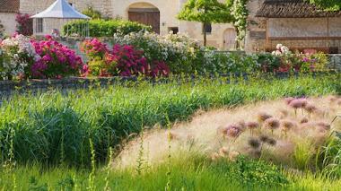 Foto del día: Rosas y más en Chateau du Rivau en el Valle del Loira