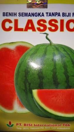 buah besar, daging merah, buah bulat, semangka non biji, semangka Classic, Non Biji Classic, Cap Kapal Terbang