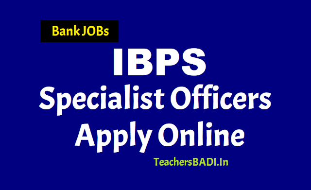 ibps so specialist officers 2019 recruitment,ibps so prelims exam dates,ibps so main exam dates,ibps online application form,last date to apply for ibps sos