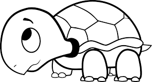 Cute Small Turtle Coloring Pages Animals