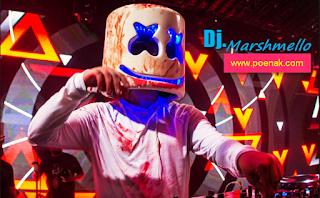 Dj Marshmello Mp3 Remix Terbaru