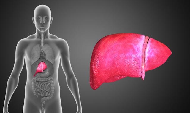 Beterraba para o fígado