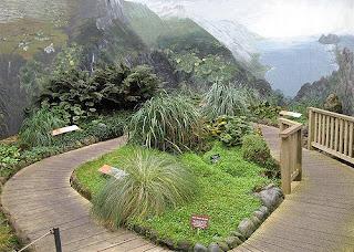 royal tasmanian botanical gardens hobart