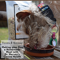dr. harvey's canine health giveaway