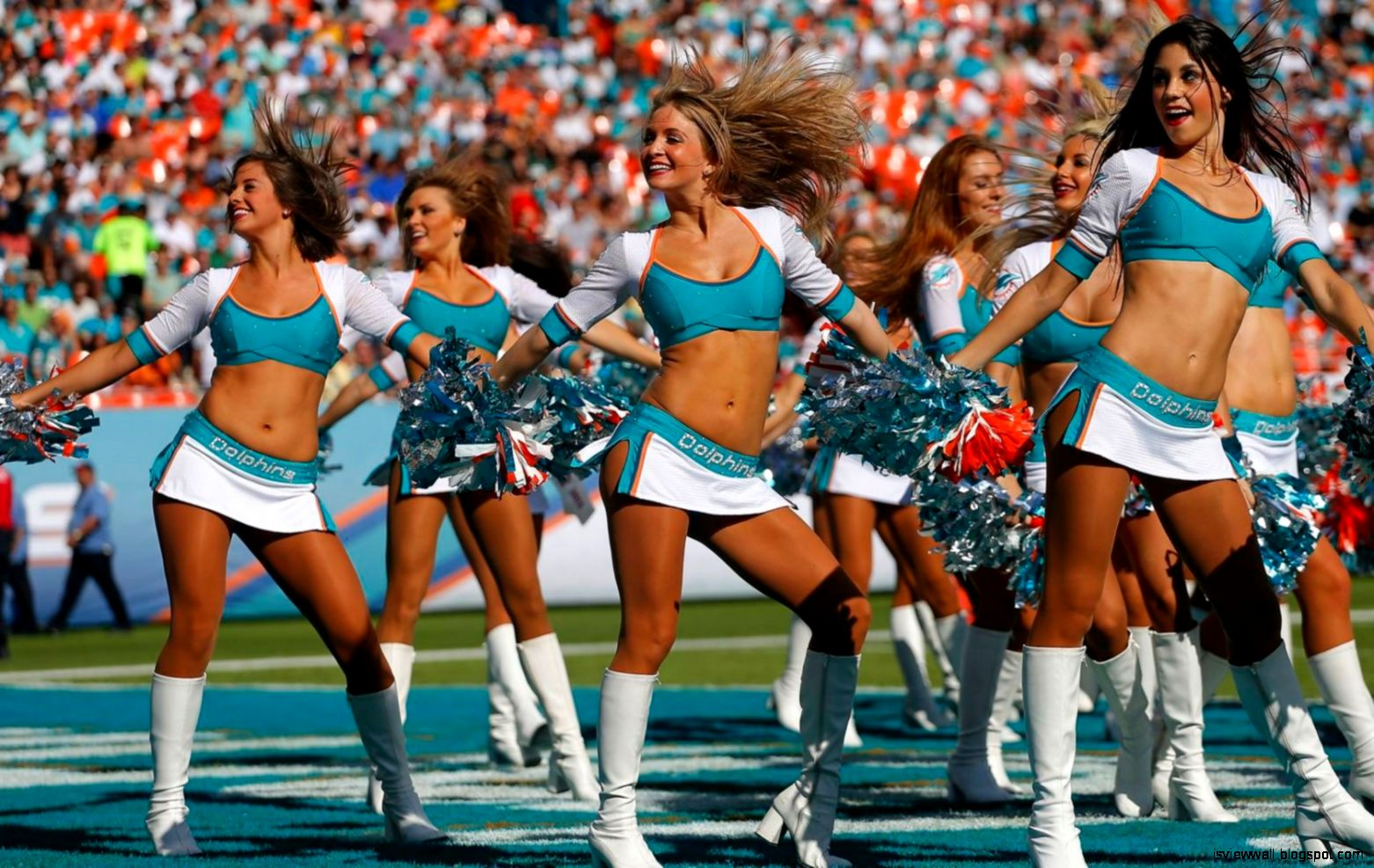 Miami Dolphins Cheerleader Hottest Nfl Wallpaper