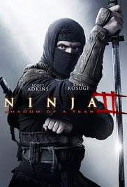 Ninja: Shadow of a Tear Poster