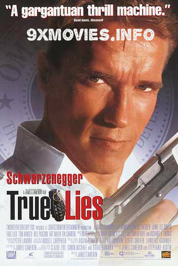 True Lies 1994 Dual Audio Hindi Bluray 300mb Download