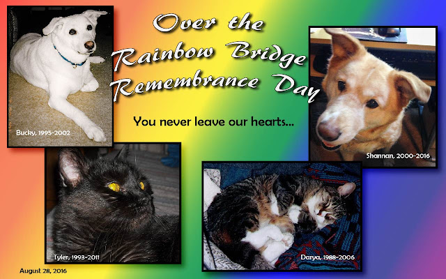 Over the Rainbow Bridge Remembrance Graphic