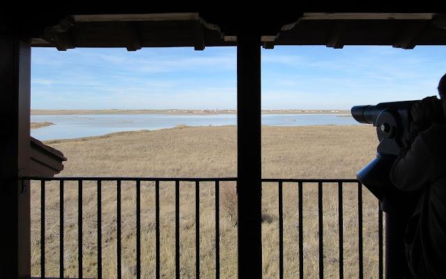 Observatorio de aves de la laguna Grande de Villafáfila