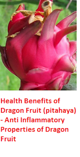Health Benefits of Dragon Fruit (pitahaya)  - Anti Inflammatory Properties of Dragon Fruit