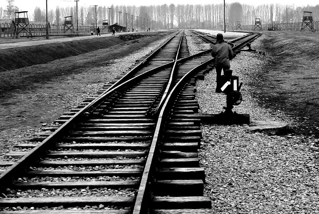 Les rails d'Auschwitz-Birkenau, par Tony Pringle