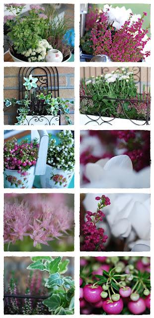 stiny s kreativblog balkon herbstlich umgepflanzt. Black Bedroom Furniture Sets. Home Design Ideas