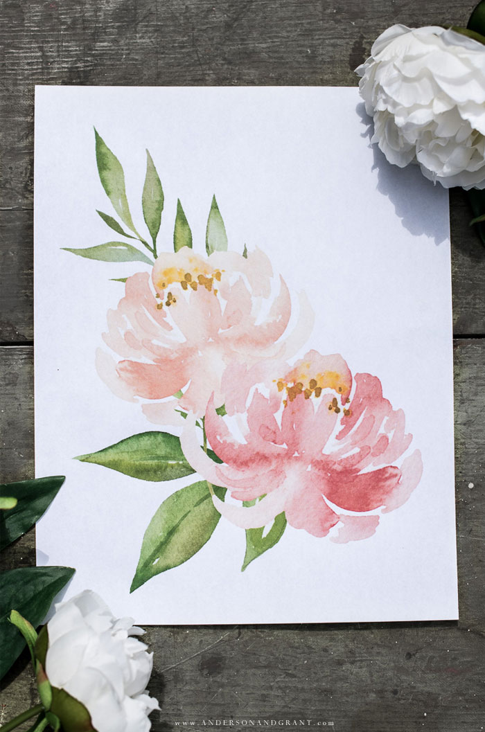 Watercolor peonies free printable