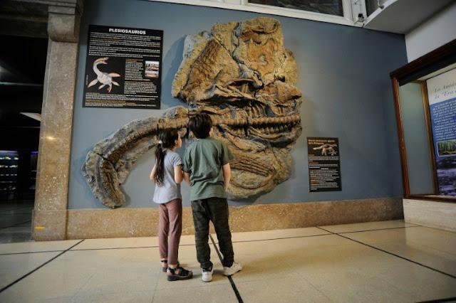 Argentina puts 65-million-year-old plesiosaur replica on display