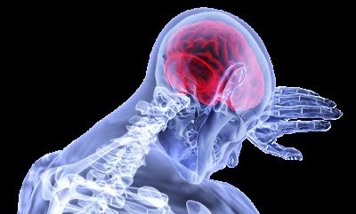 radiasi wifi pada otak