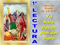 Resultado de imagen para Toda la comunidad de Israel partió de Elim y llegó al desierto de Sin